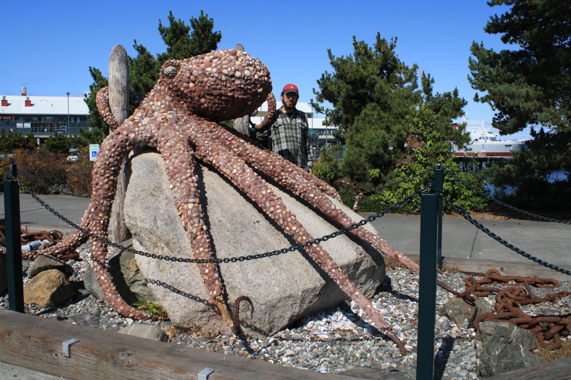 Rocktopus in Port Townsend