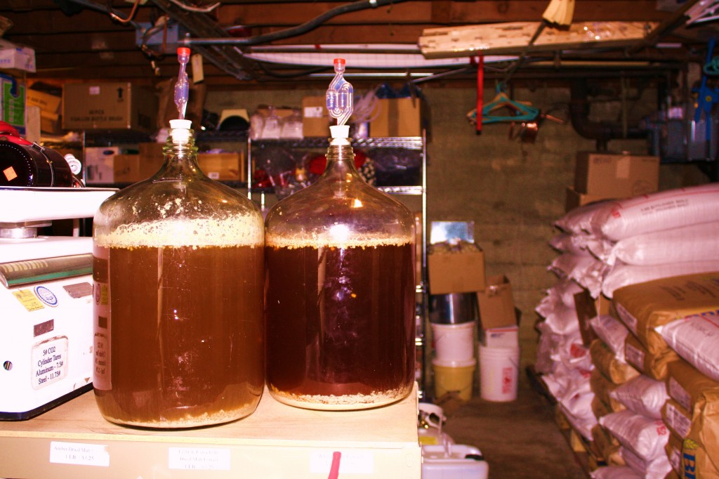 carboys and yeast at work