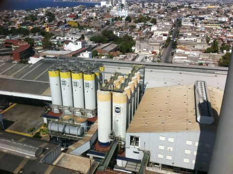 Pacifico Brewery
