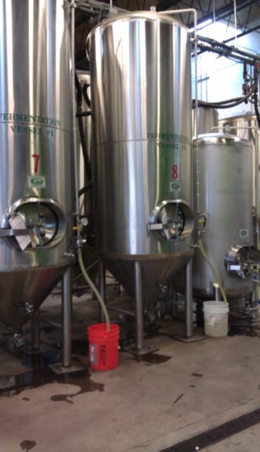 Fermentors at Fremont Brewing
