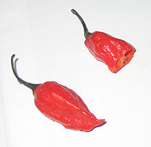 Naga Jolokia Peppers.  Hot hot HOT!