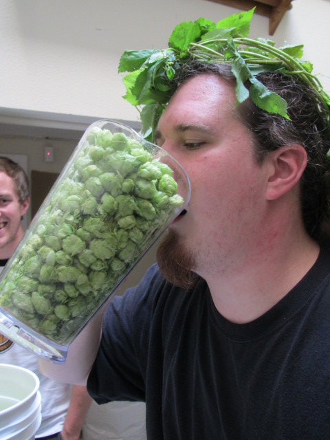 Portland U-Brewster Aaron Gillham with some fresh hops that we grew.