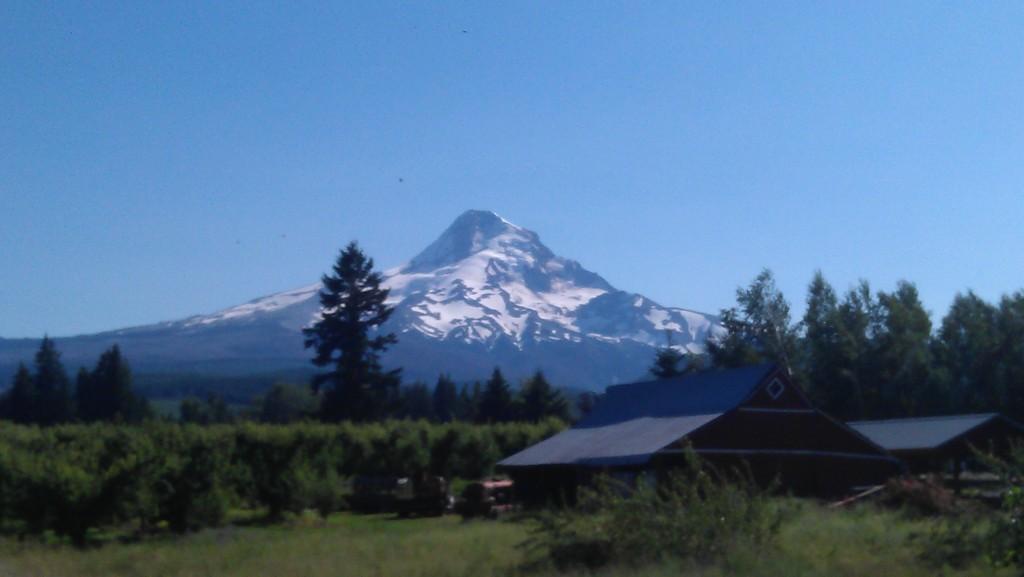 Mt. Hood, Oregon's tallest peak, seen from Parkdale, OR
