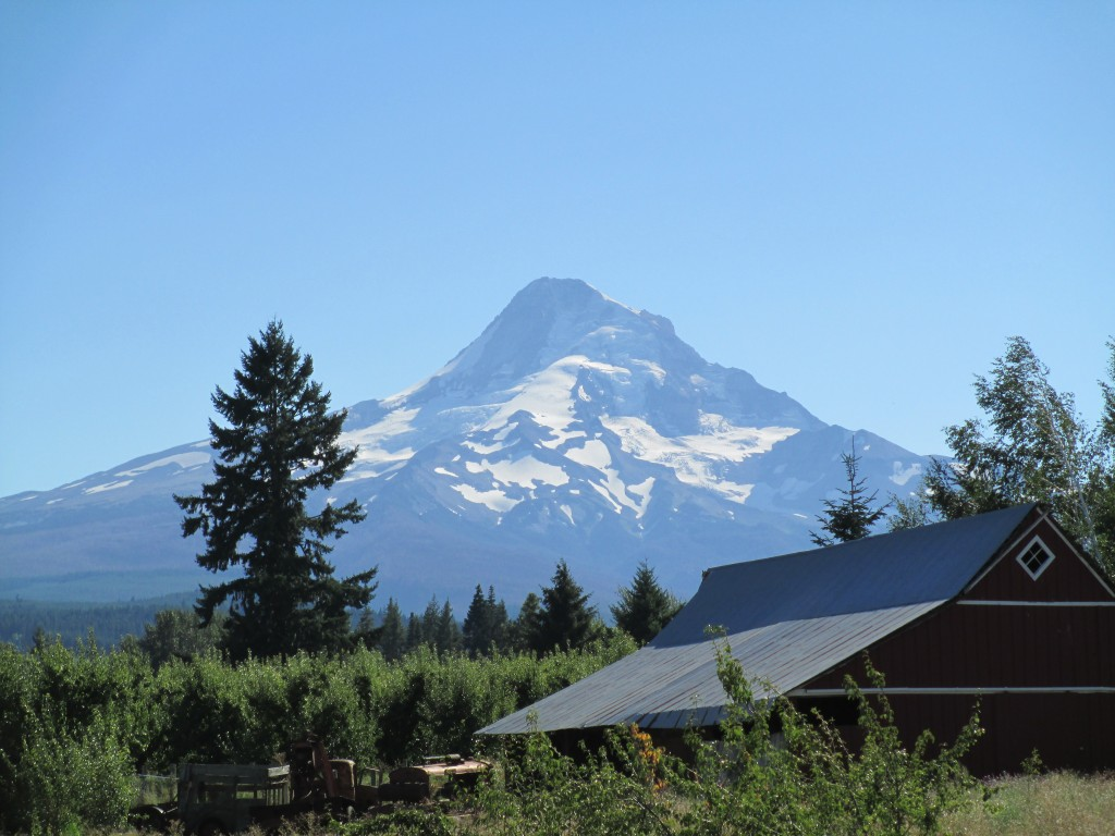 View of Mt. Hood from back patio/beer garden at Solera Brewery (photo by Terry Metcalf)