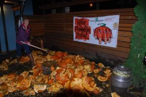 Smashing pumpkins at Killer Pumpkin Fest 2012 at Green Dragon