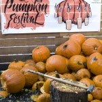 Smashed pumpkins at Killer Pumpkin Fest 2012 (photo by Allyson Riggs of Rogue)