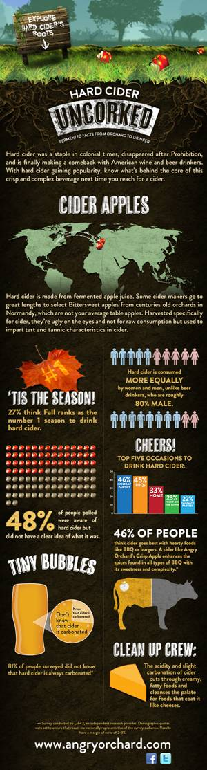 Infographic: Hard Cider Uncorked