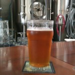 Elevation 66 Laurel Leaf Pale Ale