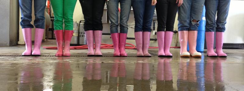 Pink Boots Society Boots Line Up