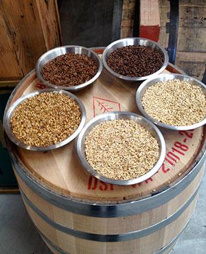 Malted barley at Westland Distillery (Courtesy of WSU)
