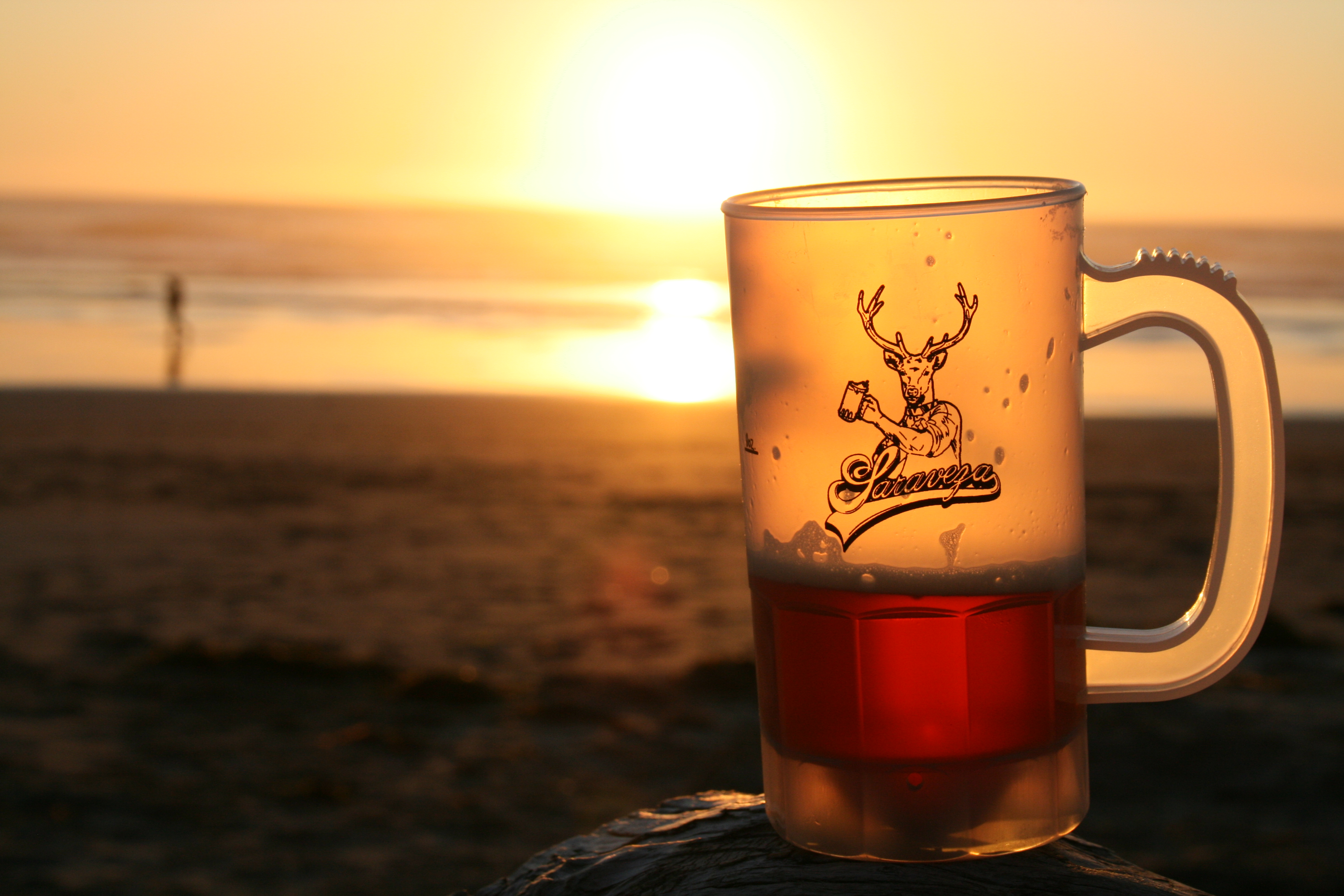 A Beer in a Saraveza Mug at Cape Lookout State Park