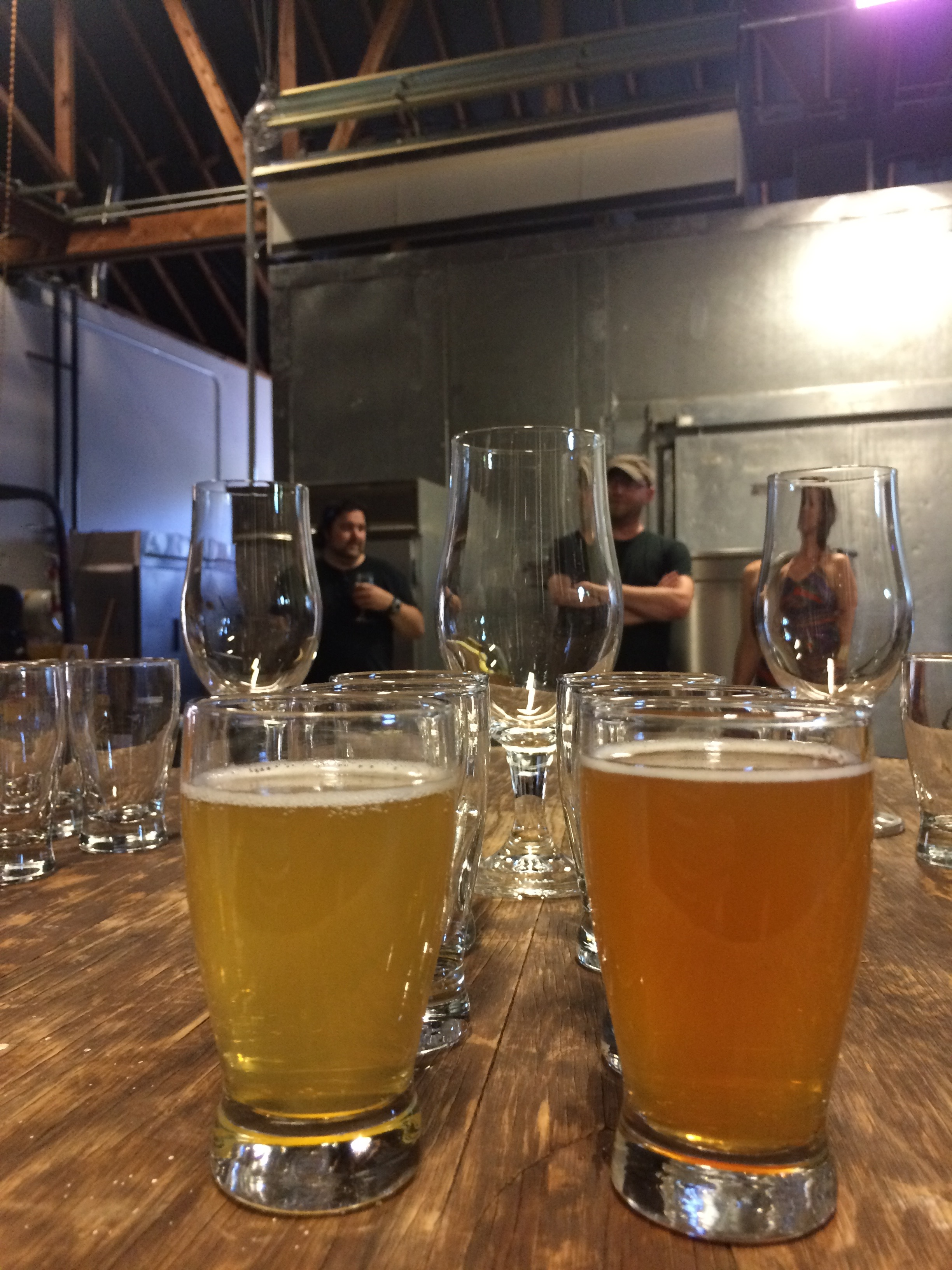 Culmination Brewing Saison I and Saison II