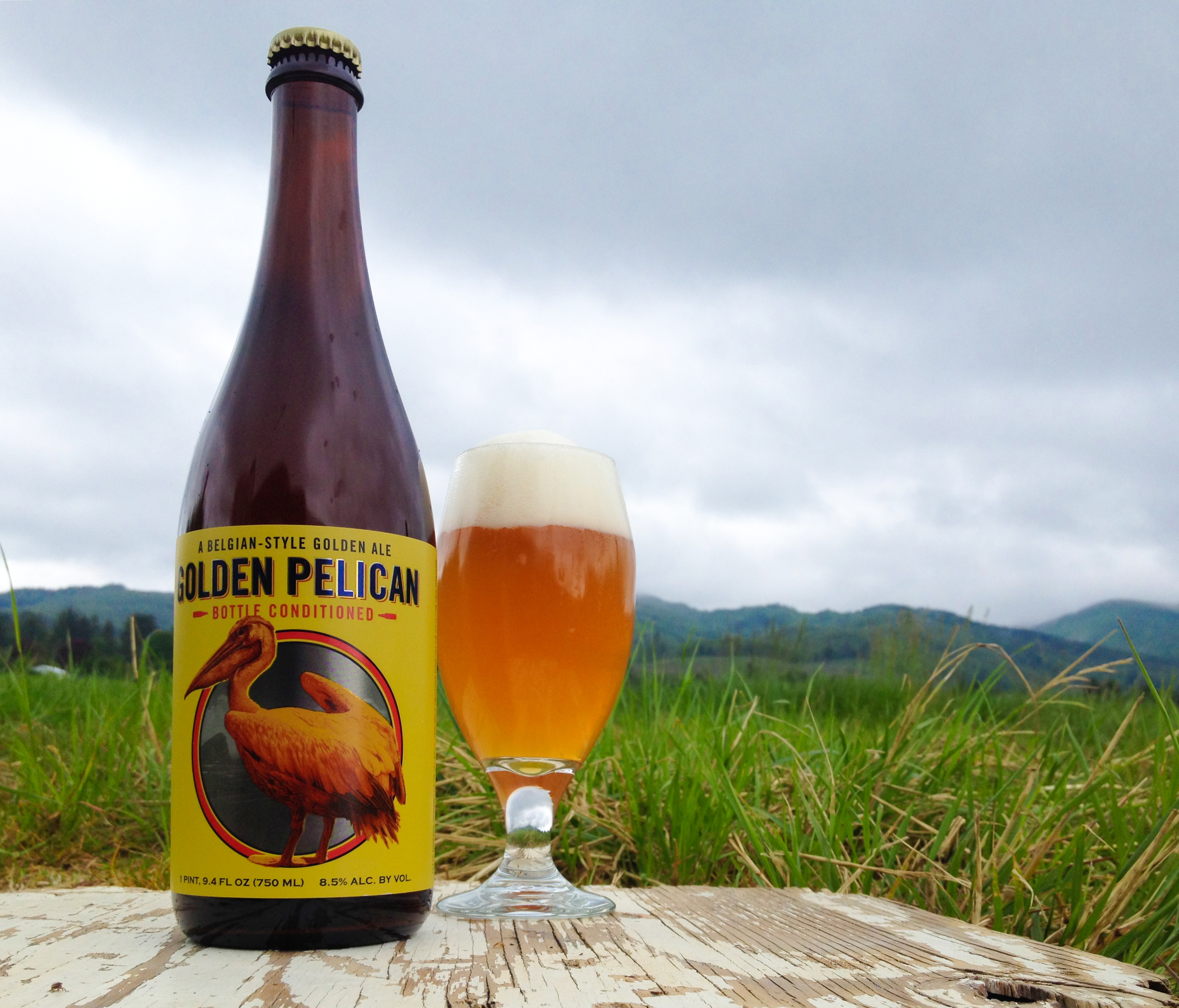 A Pour of Pelican Brewing Golden Pelican - A Belgian-Style Golden Ale