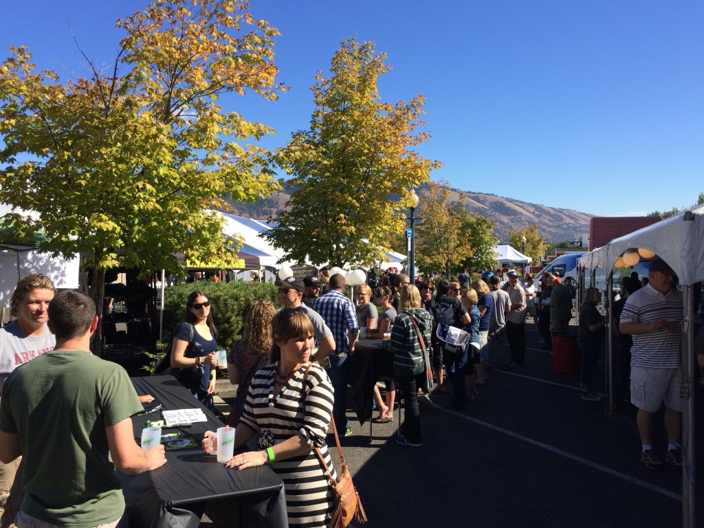 A sunny afternoon at Hood River Hops Fest
