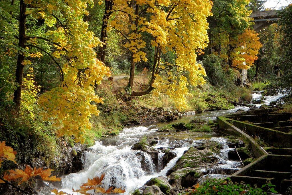 Tumwater Falls Water