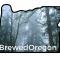 BrewedOregon Logo