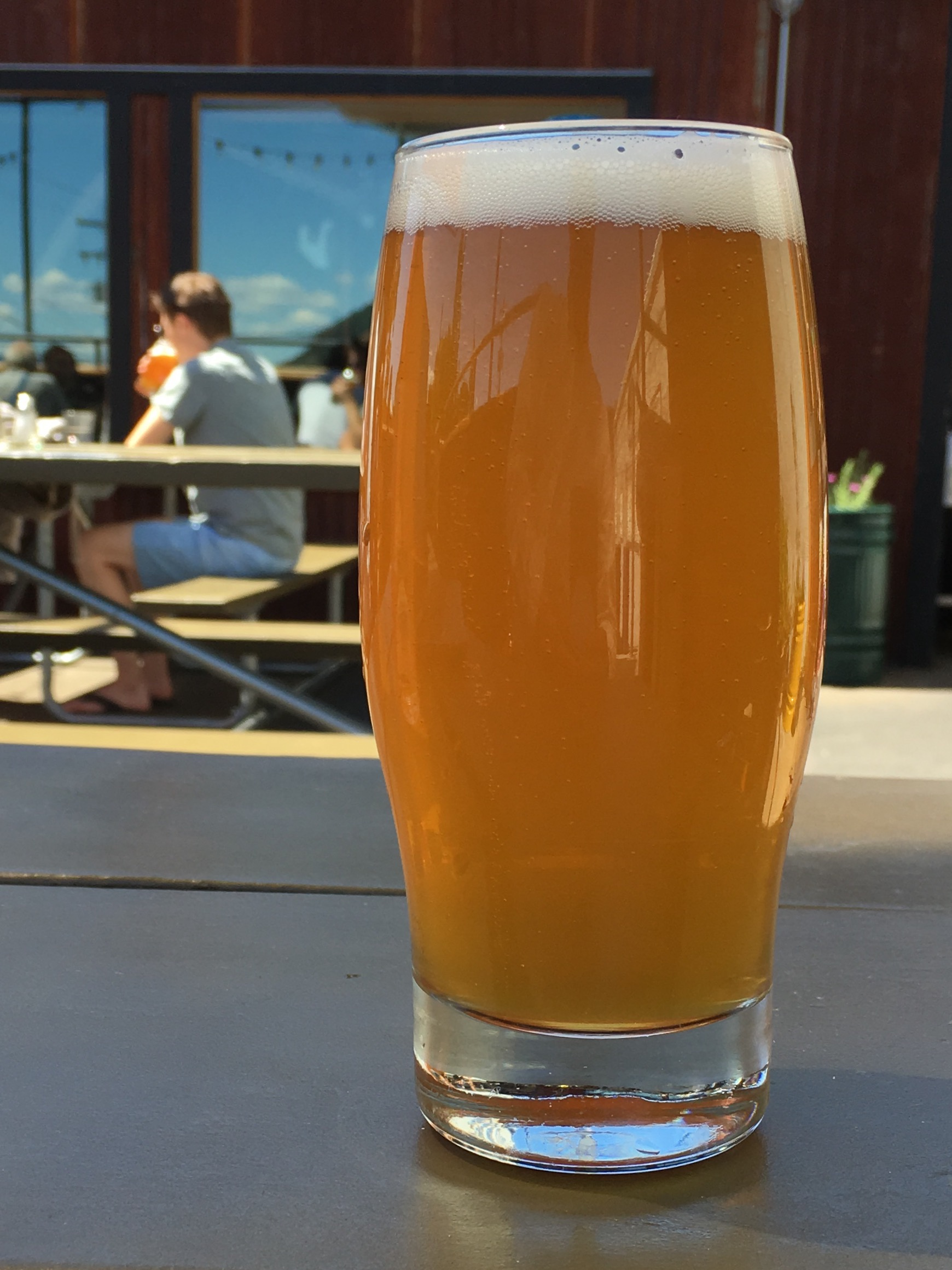 A pint of Everybody's Brewing Hoppy AF Double IPA at its pub in White Salmon, Washington.