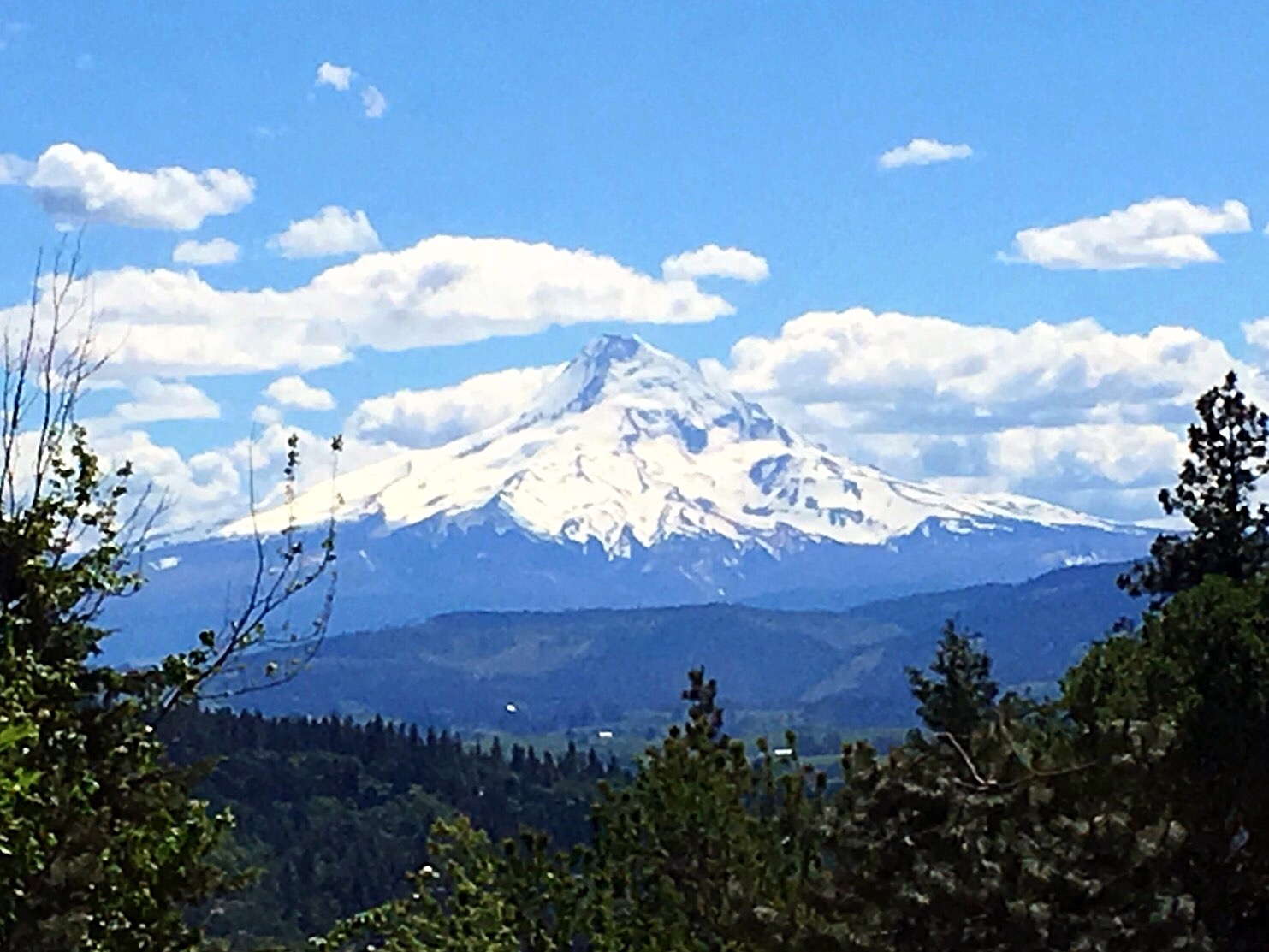 View of Mt. Hood from the patio at Everybody's Brewing in White Salmon, Washington.