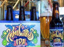 New 6 pack of Kama Citrus IPA from Worthy Brewing. (image courtesy of Worthy Brewing)