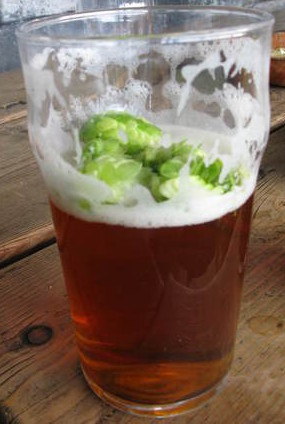 a-glass-with-a-few-fresh-hops-foystonfoto