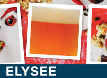 elysian-brewing-saison-elysee