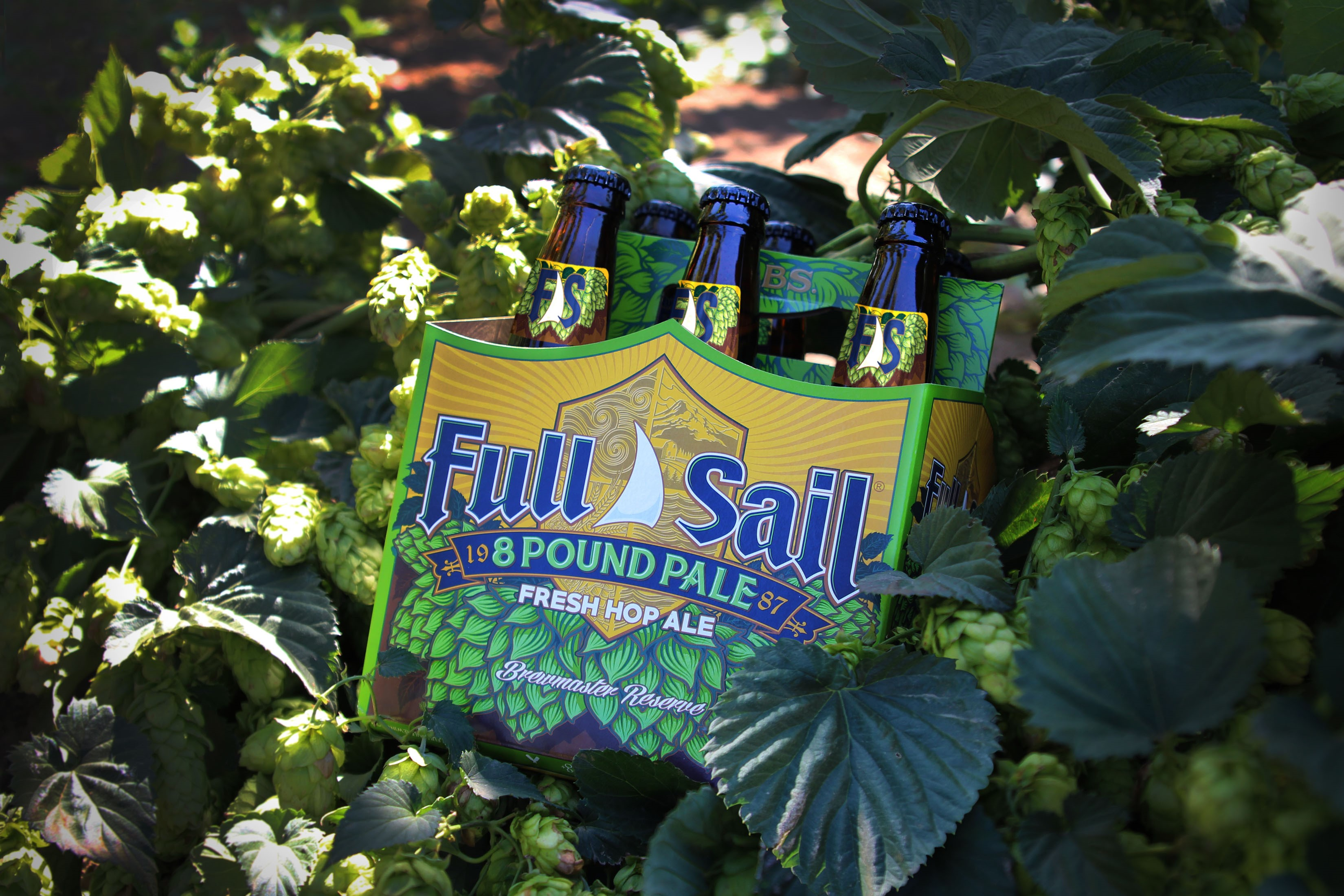 Full Sail Brewing 8 Pound Pale Fresh Hop Ale. (image courtesy of Full Sail Brewing)