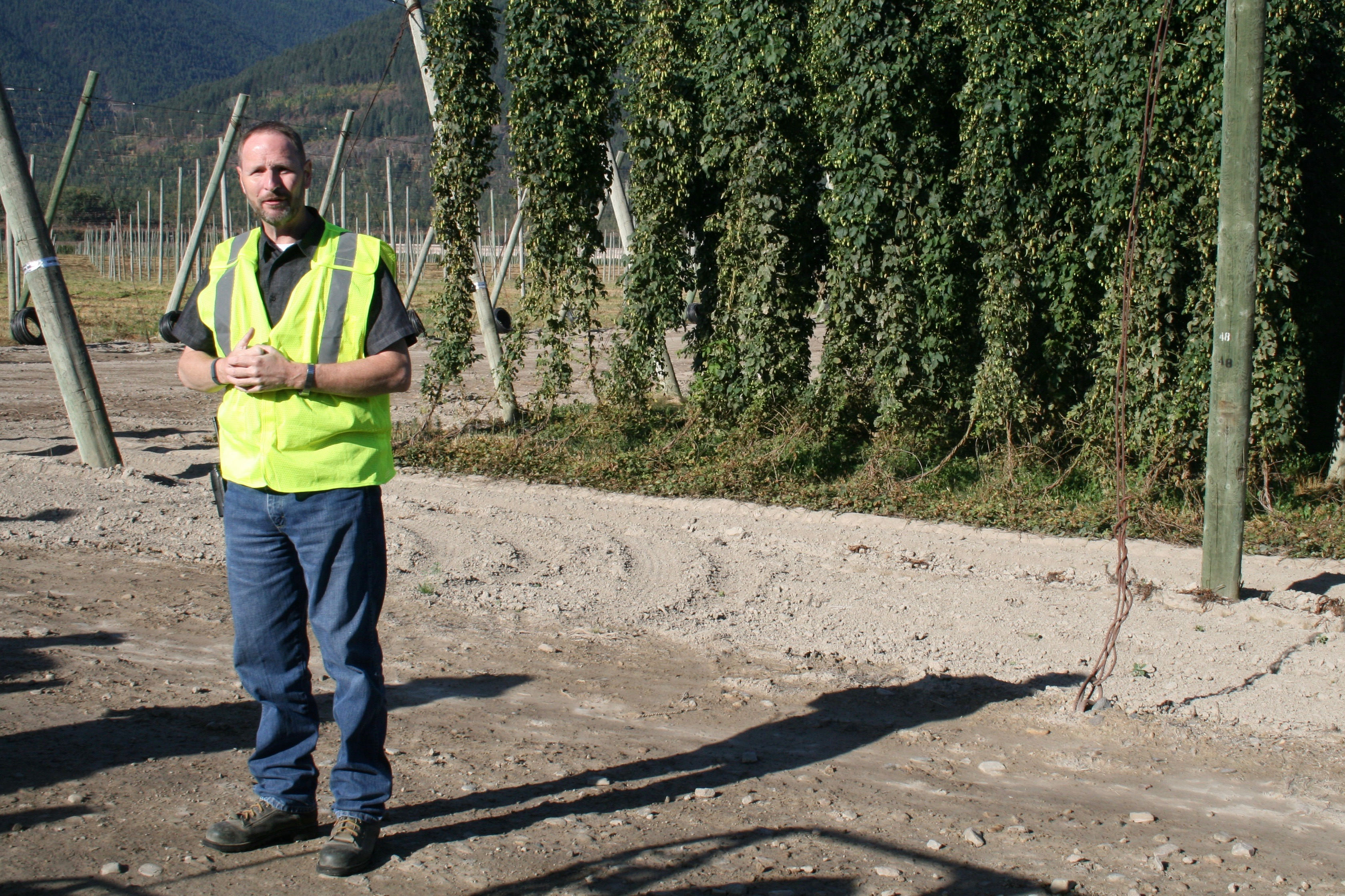 Ed Atkins, General Manager at Elk Mountain Farms, leads the Goose Island Hop Farm Tour in later August. On this day the farm was harvesting Saaz hops.