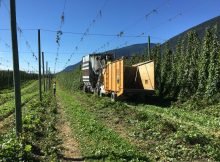 The Elk Mountain Farms build hop picker that was harvesting Saaz Hops during our visit on the farm.