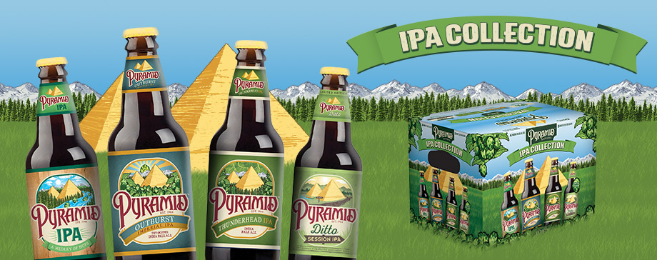 Pyramid IPA Collection 12 pack that includes Pyramid IPA, Outburst IIPA, Thunderhead IPA and Ditto Session IPA.