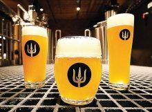 Wayfinder Beer new collaboration beer release. (image courtesy of Wayfinder Beer)