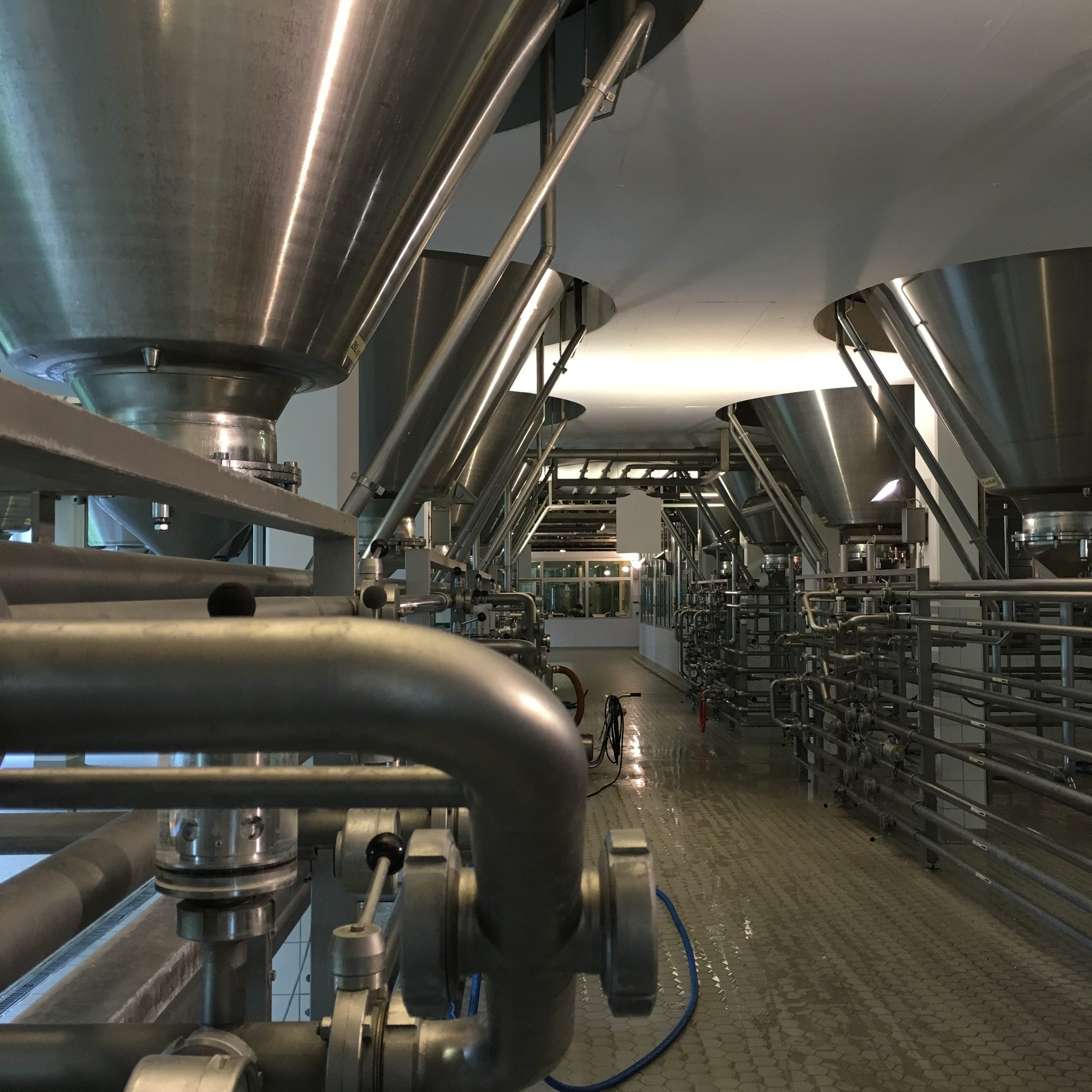 The bottom of tanks during the Ayinger Brewery tour.