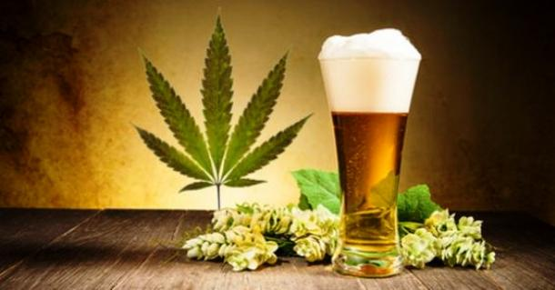 Weed and Beer. (image courtesy of ebaumsworld.com)