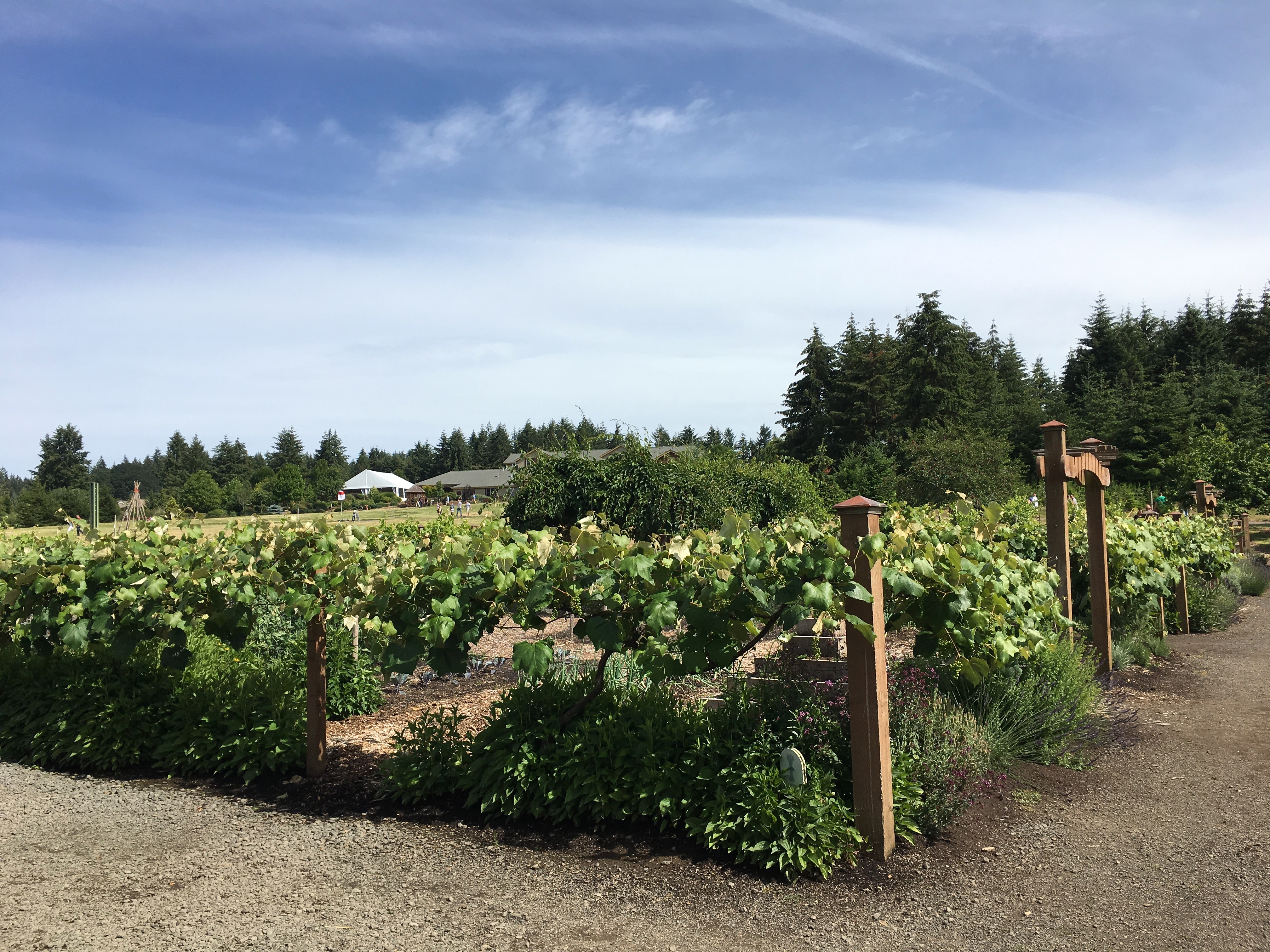 13th Annual Oregon Garden Brewfest Adds New Events For 2017