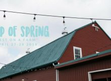 SIp of Spring Beer Festival 2018