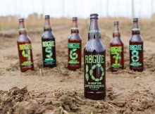 image of 10 Hop IPA courtesy of Rogue Ales