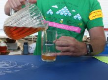 One of the 80 beers being poured at the 2018 Oregon Brewers Festival.