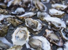 image of oysters courtesy of Chill N Fill