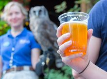 Oregon Zoo returns with Zoo Brew after a short hiatus. (image courtesy of the Oregon Zoo)