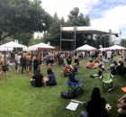 A panoramic view of the McMenamins Edgefield Brewfest.