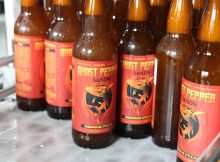 image of Ghost Pepper Saison courtesy of Ghostfish Brewing