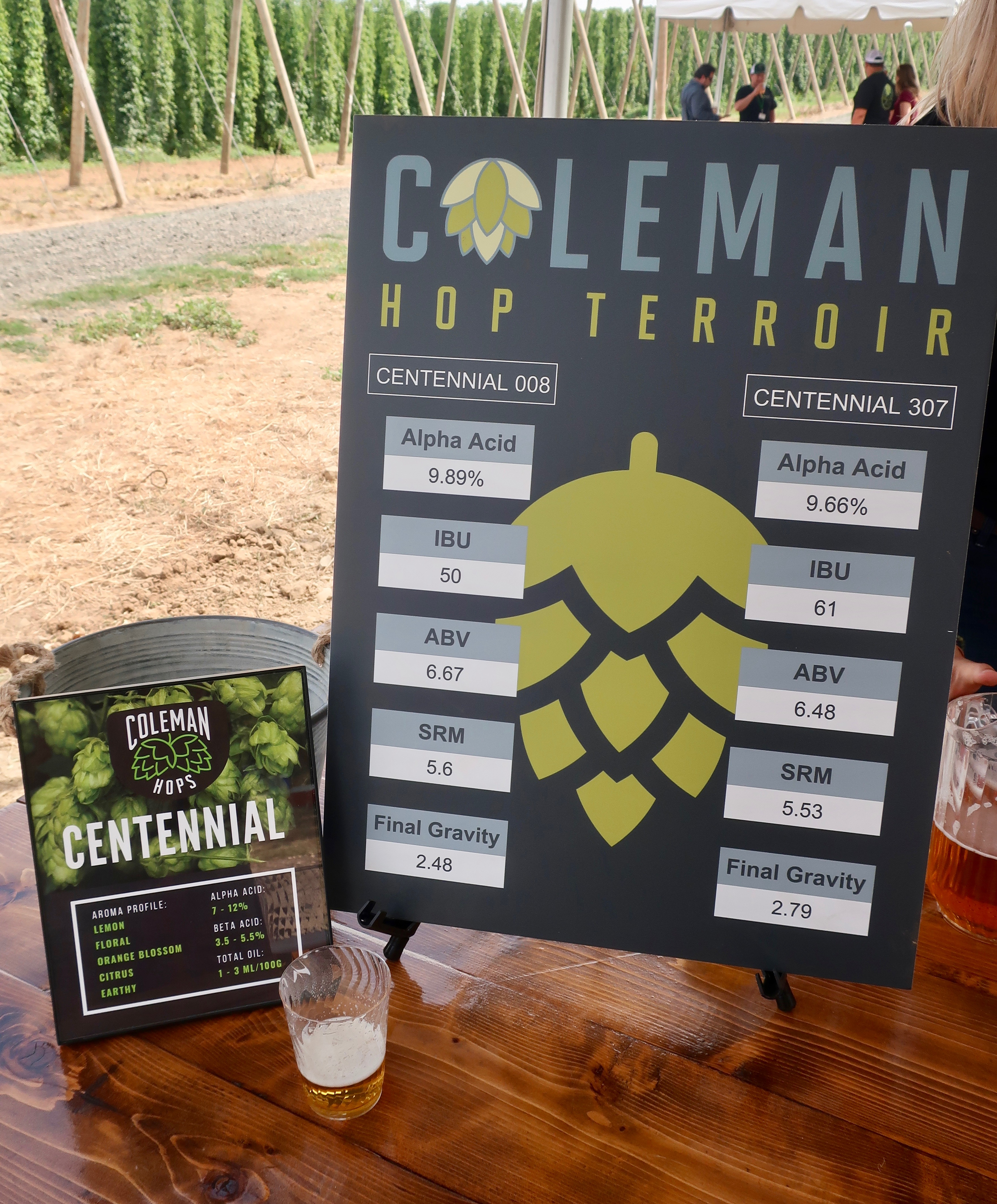 Coleman Hop Terroir featured two beers brewed with Centennial hops, each from different farms. There was a noticeable difference between the two beers.
