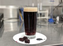 image of Blind Time courtesy of Von Ebert Brewing