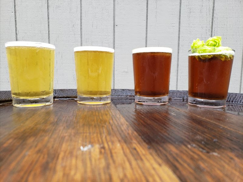 image of German-style beers courtesy of Montavilla Brew Works
