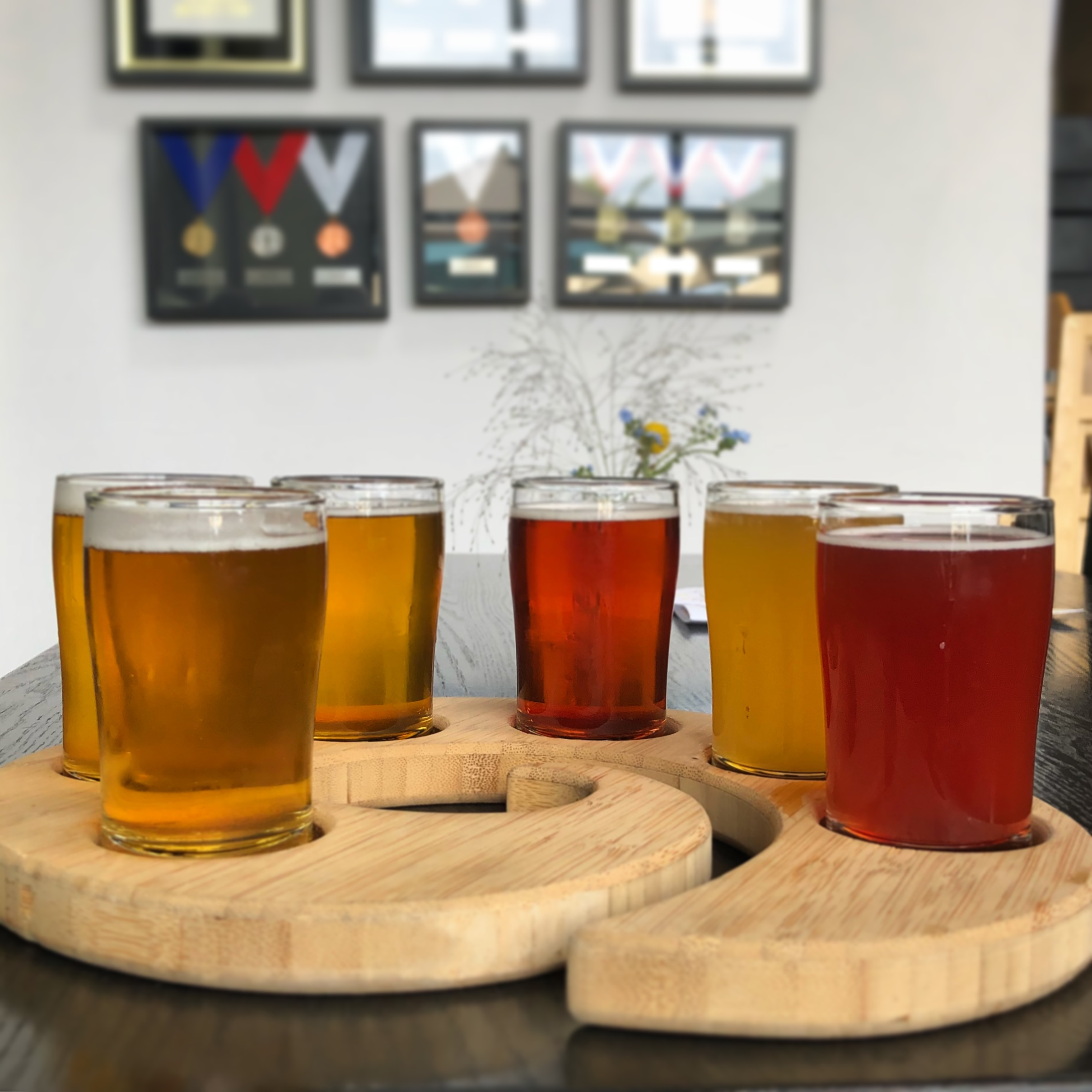 A taster tray at Ecliptic Brewing.