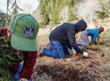 image of Operation Appleseed courtesy of Worthy Garden Club