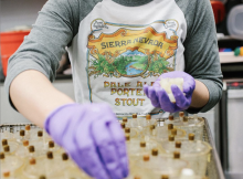 Sierra Nevada Brewing joins the fight against COVID-19 by utilizing its brewery lab for testing. (image courtesy of Sierra Nevada Brewing)