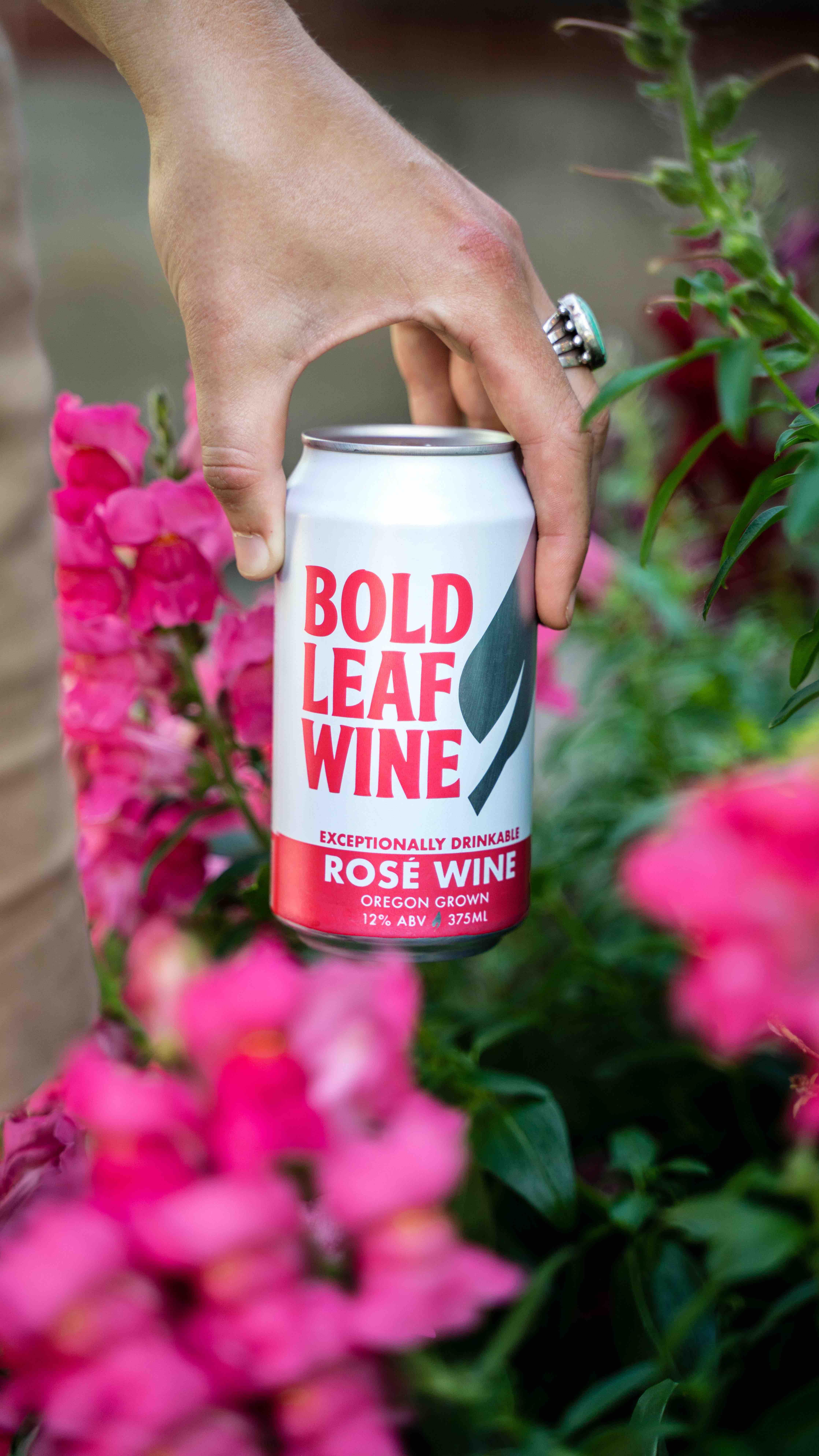 image of Rosé courtesy of Bold Leaf Wine