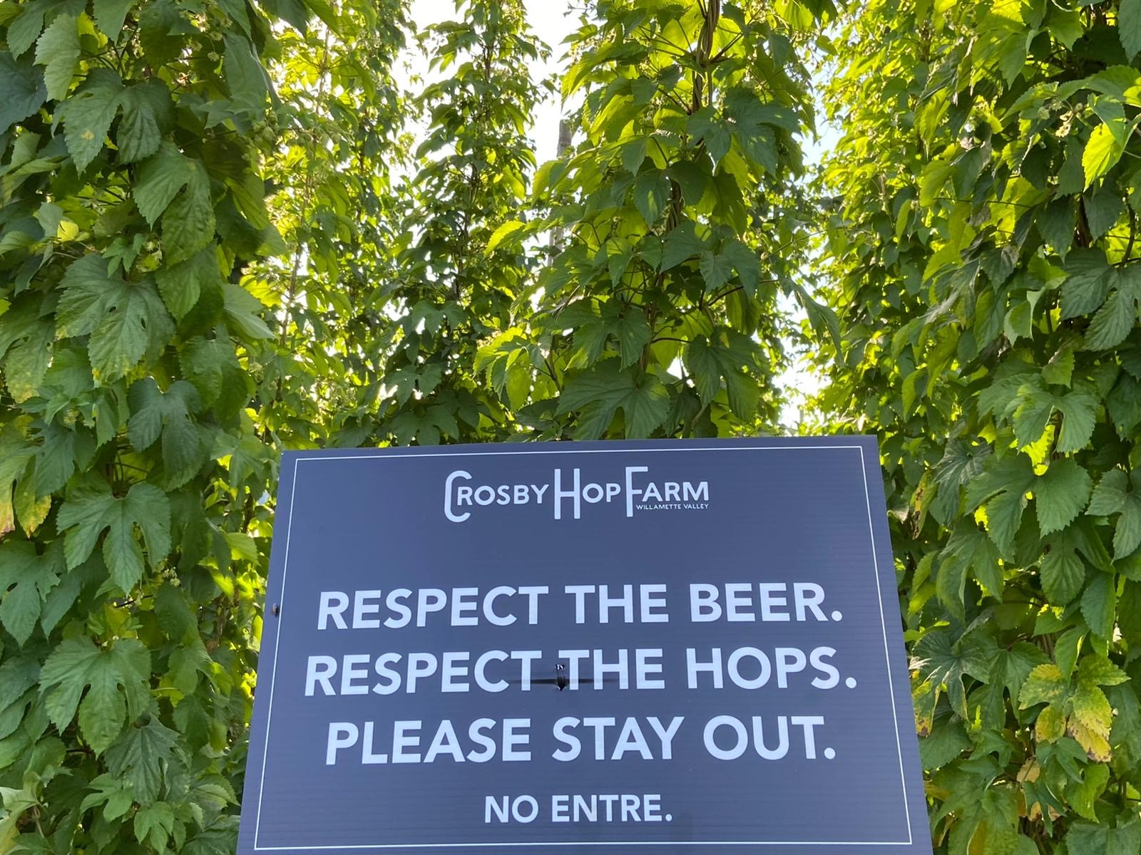 image of Respect the Hops courtesy of TopWire Hop Project