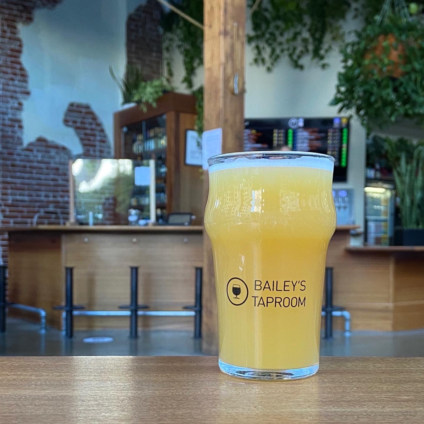 A pint of 2020 3-Way IPA at Bailey's Taproom after it re-opened under Phase 1 during the COVID-19 pandemic.