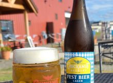 image of Fest Bier Lager courtesy of Chuckanut Brewery